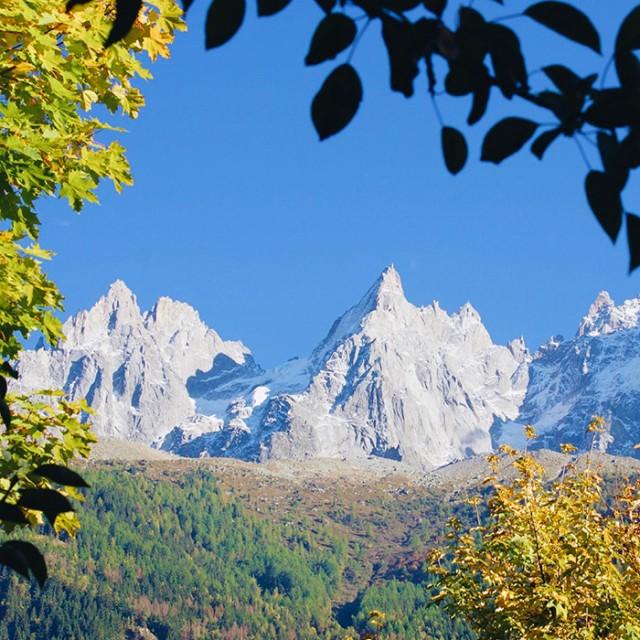 Rives automne